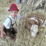 Hoftag in der Steiermark